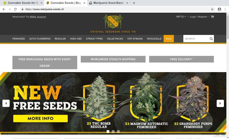 MSNL Seedbank Review